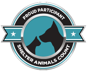 Shelter Animals Count | The National Database Project